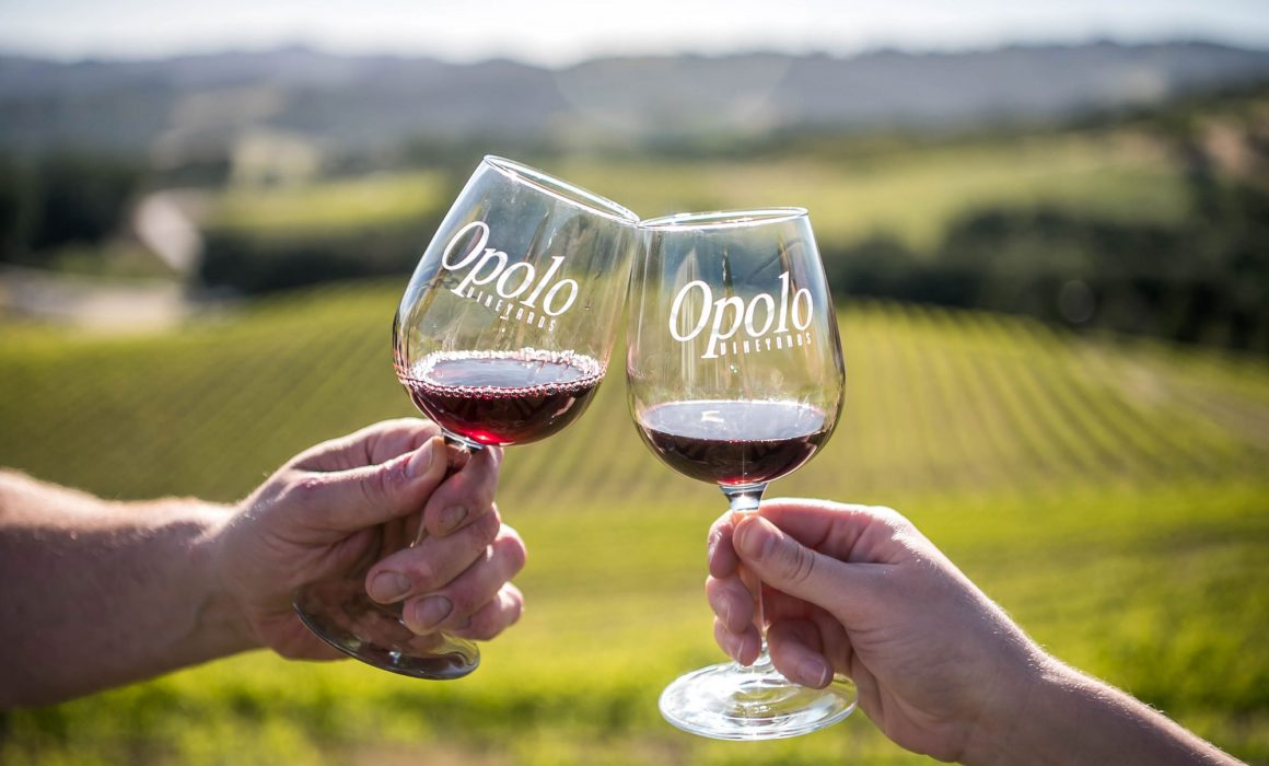 Cheers Opolo Vineyards